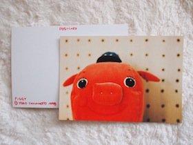 PIGGY ポストカード