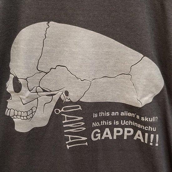 GAPPAI 【蓄光】