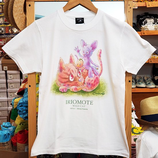 Iriomote Wild Cat【Adult size】