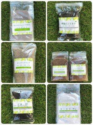 人気の芝肥料6種類