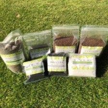 年間 芝セット(お庭の広さ10�・20�用)