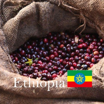 エチオピア セラム ナチュラル 中煎り 200g