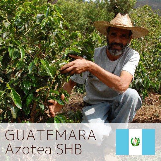 グアテマラ アゾティア農園  中煎り 200g