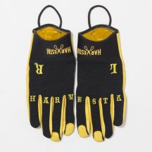 <img class='new_mark_img1' src='https://img.shop-pro.jp/img/new/icons50.gif' style='border:none;display:inline;margin:0px;padding:0px;width:auto;' />DIG THE SOIL GLOVE LEATHER