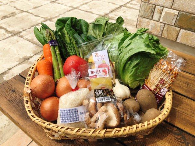 生活応援!新鮮野菜セット(送料無料) の通信販売・ネット販売