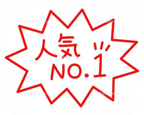 最終売り尽しセール!岐阜県揖斐産ハツシモ 精選玄米 令和2年産 29Kg 送料込み