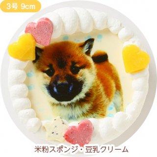 ワンコ写真ケーキ【3号 9cm】室内犬用