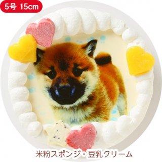 ワンコ写真ケーキ【5号 15cm】中型犬用