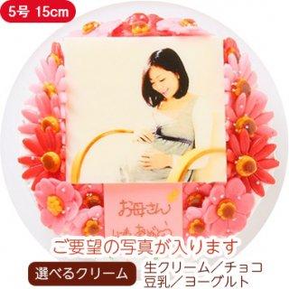 お花いっぱいフォトケーキ【5号 15cm】3人〜5人用