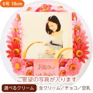 お花いっぱいフォトケーキ【6号 18cm】4人〜8人用