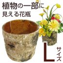 【フラワースタンド】BARKS(木皮) VASE (Lサイズ)14120635 2K-248-L【GA-09】【ガーデニング かわいい 木目 植木鉢】