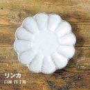 リンカ 白練(四寸皿)日本製 13292(カネコ小兵 磁器製 美濃焼 鉢 器 料理 小料理 小鉢 食器 )