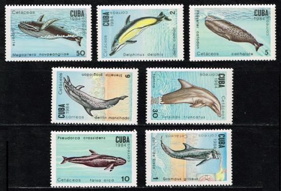 イルカとクジラの切手 キューバ1984年7種完 鯨・海豚
