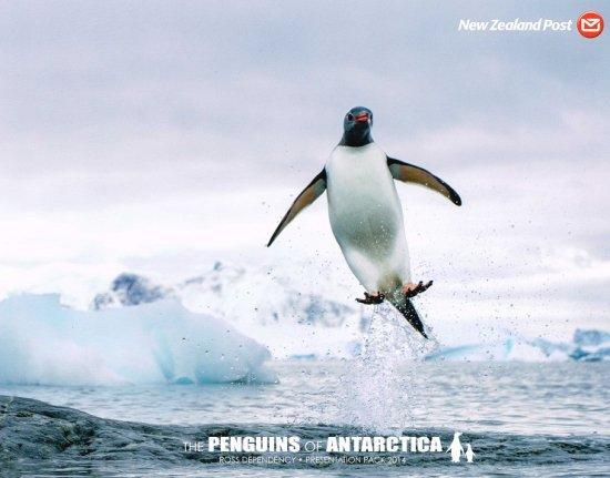 南極のペンギンの切手 ロス海2014年プレゼンテーションパック 鳥、変形切手