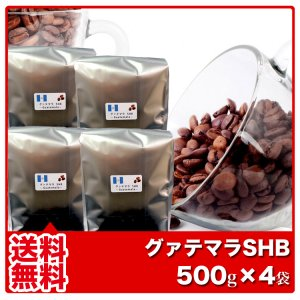 【送料無料】グァテマラSHB【500g×4袋】