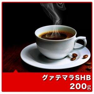 グァテマラSHB【200g】