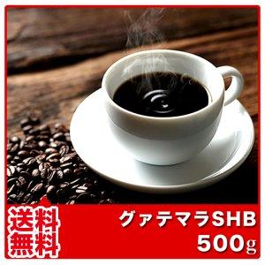 【送料無料】グァテマラSHB【500g】