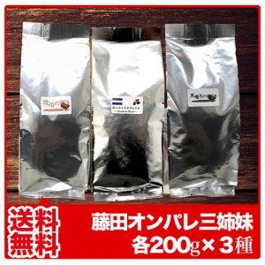 【送料無料】藤田3姉妹 ◆琥珀、黒曜石、ホンジュラス【200g×3袋】