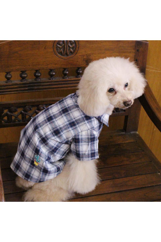 CaliforniaCactusDogShirtsカリフォルニア・ドッグシャツ大人カジュアルに最適な海外ファッションのothers(その他インポートアイテム)のドッググッズや。アメカジテイストのワンちゃん用チェックシャツ。洗いざらしのシワも気にならないカジュアルなチェックシャツ。/main-25