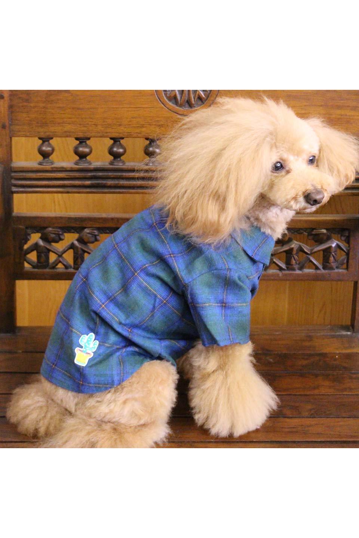 CaliforniaCactusDogShirtsカリフォルニア・ドッグシャツ大人カジュアルに最適な海外ファッションのothers(その他インポートアイテム)のドッググッズや。アメカジテイストのワンちゃん用チェックシャツ。洗いざらしのシワも気にならないカジュアルなチェックシャツ。/main-27