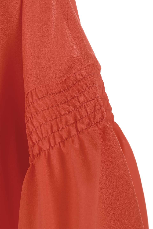 FlaredSleeveBlouseフレアスリーブ・シャーリングブラウス大人カジュアルに最適な海外ファッションのothers(その他インポートアイテム)のトップスやシャツ・ブラウス。ひらひらのフレアスリーブと透け感のある生地の春夏ブラウス。広がった袖口と絞りすぎないシャーリングがポイントのブラウスです。/main-23