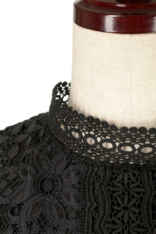 LongSleeveFullLaceDressハイネック・フルレースワンピース大人カジュアルに最適な海外ファッションのothers(その他インポートアイテム)のワンピースやミディワンピース。低めのハイネックが可愛いミディ丈レースワンピース。袖には腕が細く見えるようなレースを用いて全体的にスッキリしたシルエットになっています。/main-6