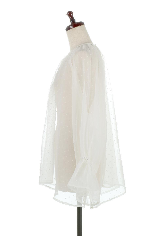 CandySleeveDottedSheerBlouseキャンディースリーブ・シアーブラウス大人カジュアルに最適な海外ファッションのothers(その他インポートアイテム)のトップスやカットソー。今季大人気のシアー素材を使用したギャザーブラウス。各所にギャザーを多用したデザインでふんわりとした女性らしさを醸し出してくれます。/main-12