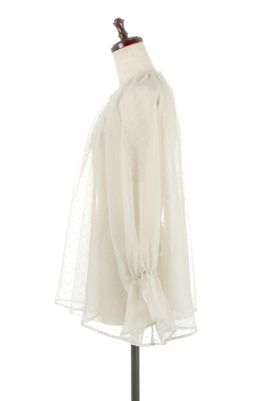 CandySleeveDottedSheerBlouseキャンディースリーブ・シアーブラウス大人カジュアルに最適な海外ファッションのothers(その他インポートアイテム)のトップスやカットソー。今季大人気のシアー素材を使用したギャザーブラウス。各所にギャザーを多用したデザインでふんわりとした女性らしさを醸し出してくれます。/main-2