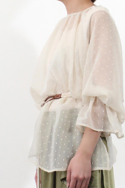 CandySleeveDottedSheerBlouseキャンディースリーブ・シアーブラウス大人カジュアルに最適な海外ファッションのothers(その他インポートアイテム)のトップスやカットソー。今季大人気のシアー素材を使用したギャザーブラウス。各所にギャザーを多用したデザインでふんわりとした女性らしさを醸し出してくれます。/main-26