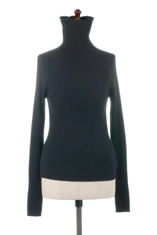RibKnitTurtleNeckTopリブニット・タートルネック大人カジュアルに最適な海外ファッションのothers(その他インポートアイテム)のトップスやニット・セーター。重ね着に活躍するシンプル・リブタートルニットのトップス。やや長めの袖でクシュッと感が可愛いアイテムです。/main-10