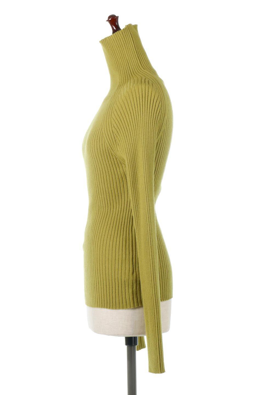 RibKnitTurtleNeckTopリブニット・タートルネック大人カジュアルに最適な海外ファッションのothers(その他インポートアイテム)のトップスやニット・セーター。重ね着に活躍するシンプル・リブタートルニットのトップス。やや長めの袖でクシュッと感が可愛いアイテムです。/main-2