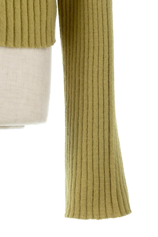 RibKnitTurtleNeckTopリブニット・タートルネック大人カジュアルに最適な海外ファッションのothers(その他インポートアイテム)のトップスやニット・セーター。重ね着に活躍するシンプル・リブタートルニットのトップス。やや長めの袖でクシュッと感が可愛いアイテムです。/main-21