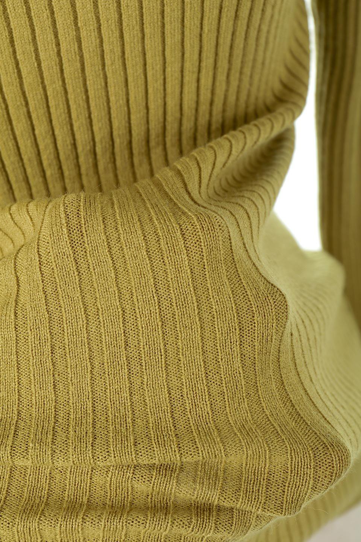 RibKnitTurtleNeckTopリブニット・タートルネック大人カジュアルに最適な海外ファッションのothers(その他インポートアイテム)のトップスやニット・セーター。重ね着に活躍するシンプル・リブタートルニットのトップス。やや長めの袖でクシュッと感が可愛いアイテムです。/main-22