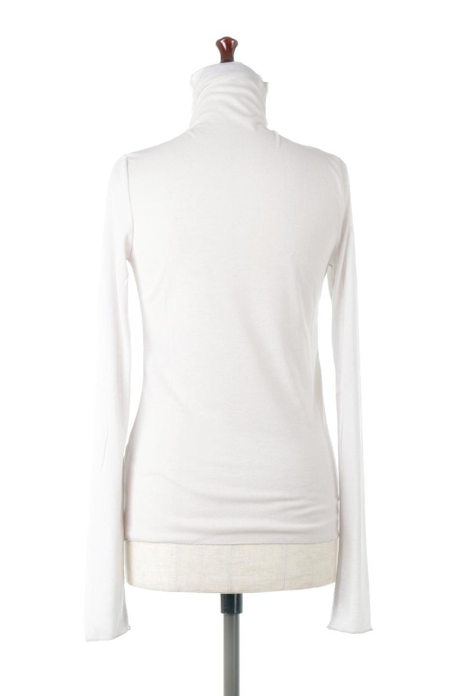 TurtleNeckSheerTopタートルネック・シアートップス大人カジュアルに最適な海外ファッションのothers(その他インポートアイテム)のトップスやカットソー。涼し気な透け感のシアー素材を使用した長袖カットソー。程よいタイトなシルエットでインナーに合わせても邪魔になりません。/main-24