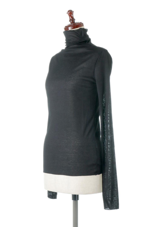 TurtleNeckSheerTopタートルネック・シアートップス大人カジュアルに最適な海外ファッションのothers(その他インポートアイテム)のトップスやカットソー。涼し気な透け感のシアー素材を使用した長袖カットソー。程よいタイトなシルエットでインナーに合わせても邪魔になりません。/main-26